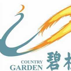 碧桂园智慧物业服务集团股份有限公司如皋龙游湖分公司